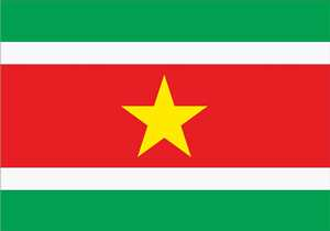 Bandeira do Suriname
