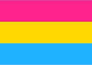 Bandeira do Orgulho Pansexual